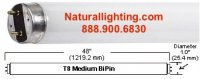 """F32T8, 32 watt, 1"""" Diameter, Length - 48"""""""