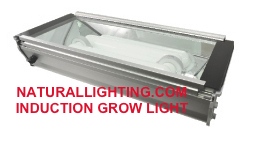 Induction Grow Light, 80 watt, 5000K (# INDG806)