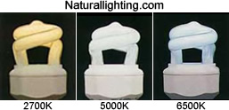 Naturallighting.com Standard Spiral Compact Fluorescent Bulbs