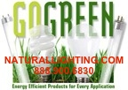 GO GREEN AMERICA - GREEN CONSULTING