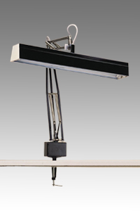 Full Spectrum Task Lamp 2 Lamp F15T8 (# NLTL82) DISCONTINUED