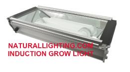 Induction Grow Light, 80 watt, 5000K (# INDG806)