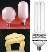 Naturallighting Compact Fluorescent Bulbs